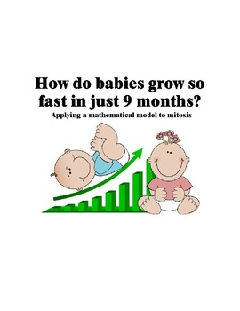 Modeling Mitosis: How do babies grow so fast in just 9 months?