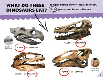 Animals NGSS:Dinosaur Fossil Evidence ❤ BUNDLE:Activity, Reading,Assessment—SALE