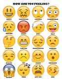 How do you feel chart
