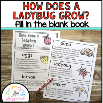 How Does A Ladybug Grow? Fill in the blank book