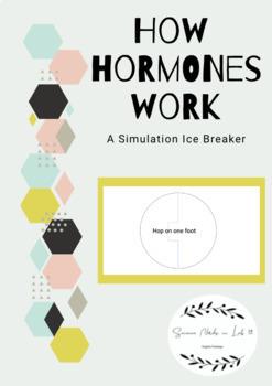 How Hormones Work