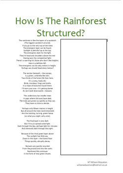How is The Rainforest Structured?