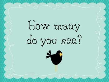 How many birds counting activity