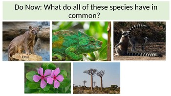 How might unique traits be used to evaluate the survival of an endemic species