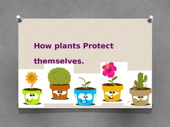 How plants protect themselves