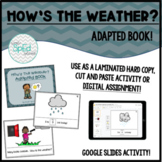 How's The Weather? Adapted Book for Kinder/Autism/SpEd Dig