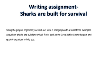 How sharks survive