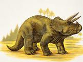 How tall is your dinosaur?