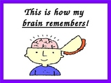 How the Brain Remembers