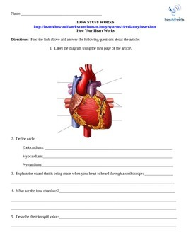 How the Heart Works- Internet Assignment for Science How Stuff Works