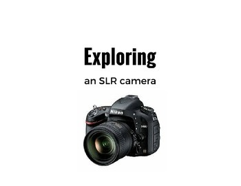 How the SLR camera works