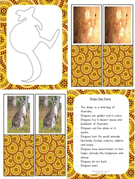 How the kangaroo got its pouch: Aboriginal Dreamtime Story & Activities NAIDOC