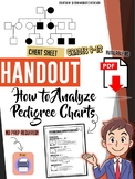 How to Analyze Pedigree Charts - Cheat Sheet - Handout