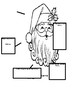 How to Catch Santa Literature Packet - The Tenth Book of Christmas