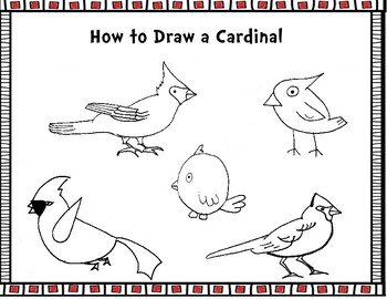 How to Draw Cardinals- Drawing Tutorial Worksheets
