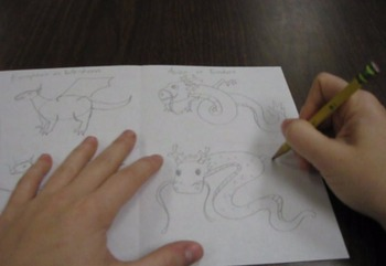 How to Draw Eastern and Western Style Dragons