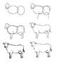 How-to-Draw: Farm Life