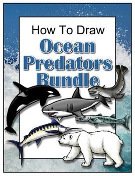How to Draw Ocean Predators Bundle