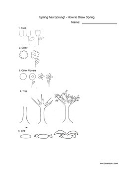 How to Draw Spring Things! Ready to use worksheet/handout