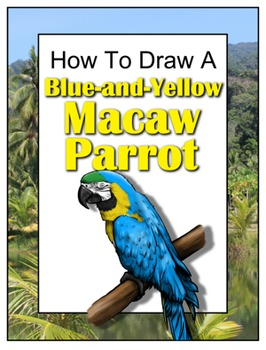 How to Draw a Blue-and-Yellow Macaw Parrot