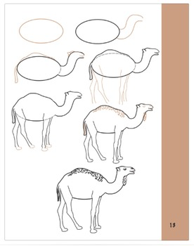 How to Draw a Camel!