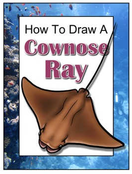 How to Draw a Cownose Ray