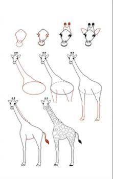 How to Draw a Giraffe!