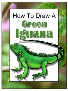 How to Draw a Green Iguana