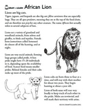 How to Draw a Lion Worksheet