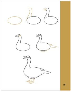 How to Draw a Muscovy Duck!