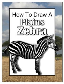 How to Draw a Plains Zebra
