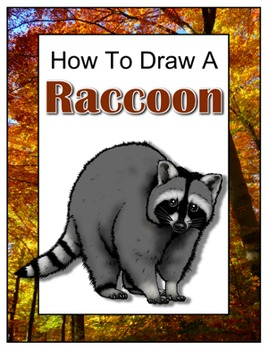 How to Draw a Raccoon