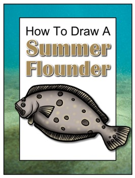 How to Draw a Summer Flounder