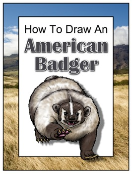 How to Draw an American Badger
