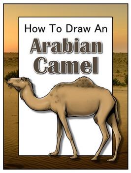 How to Draw an Arabian Camel