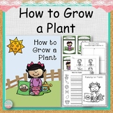How to Grow a Plant Activities