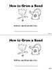 How to Grow a Seed