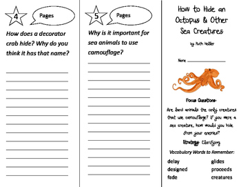 How to Hide an Octopus Trifold - Imagine It 2nd Grade Unit 4 Week 3