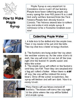 How to Make Maple Syrup: Non-fiction Reading Passage