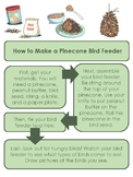 How to Make a Pinecone Bird Feeder - ESOL