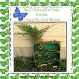 How to Make a Rainforest Diorama: Grades 1 and 2