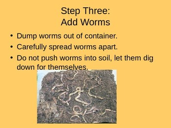 How to Make a Worm Farm