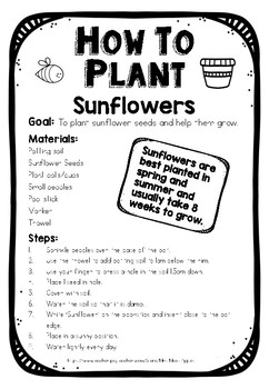 How to Plant Sunflowers: Procedural Text Model