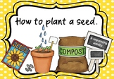 How to Plant a Seed Sequencing Activity/Flashcards