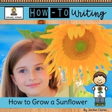 How-To Procedural Writing: How to Grow a Sunflower