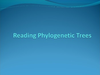 How to Read Phylogenetic Trees