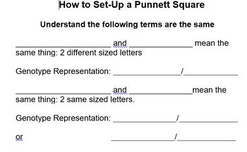 How to Set-Up a Punnett Square