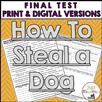 How to Steal a Dog Final Test