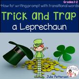 Trick and Trap a Leprechaun!