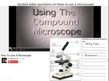 How to Use a Microscope Guided Questions for video